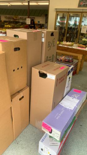 quinlan-wasserman-delivery