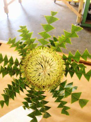 quinlan-wasserman-flowers-2